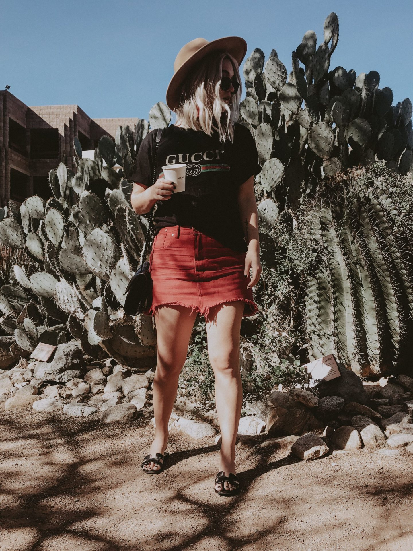 cathclaire Loews Tucson